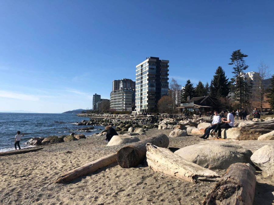 West Vancouver Seal Walk